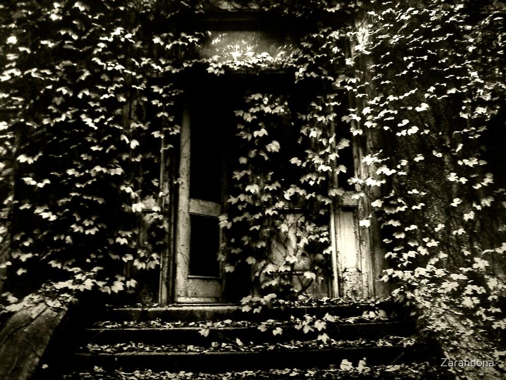 Door hidden behind ivy by Zarandona