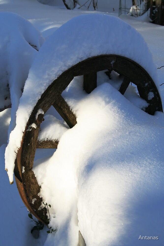 Winter 5 by Antanas