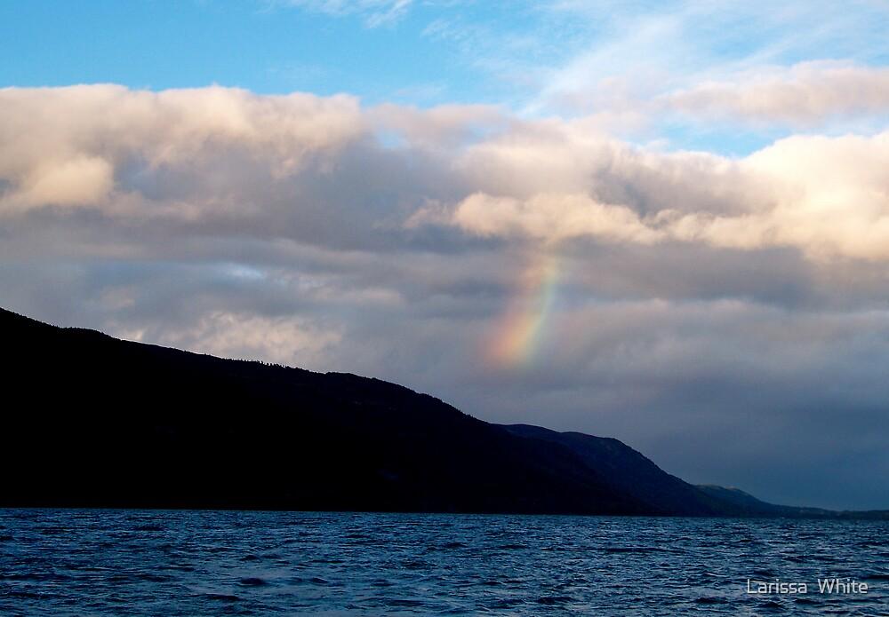 Inverted Rainbow by Larissa  Plain