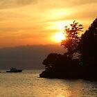 Catawba Island by Bob Hardy