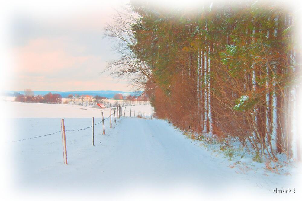 Winter Lane by dmark3