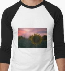 Sunflowers in a field in the afternoon. Men's Baseball ¾ T-Shirt