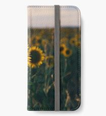 Sunflowers in a field in the afternoon. iPhone Wallet/Case/Skin