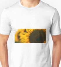 Sunflowers in a field in the afternoon. Unisex T-Shirt