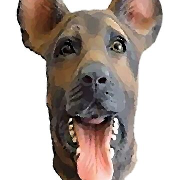 Dog Mask - Philadelphia Eagles by Swiffer16