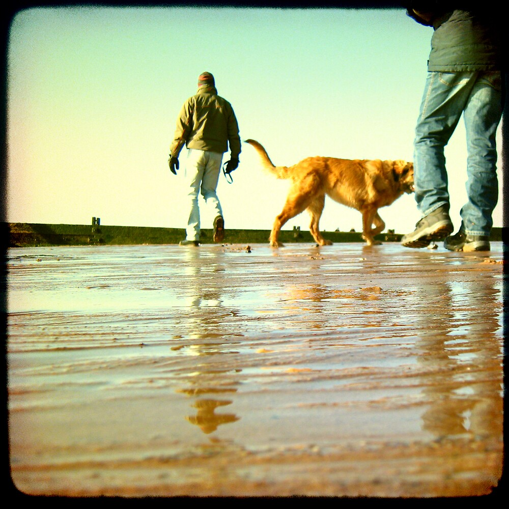 Exmouth Beach Part 1 by Sam Mortimer