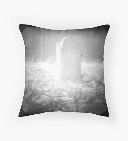1497 Throw Pillow