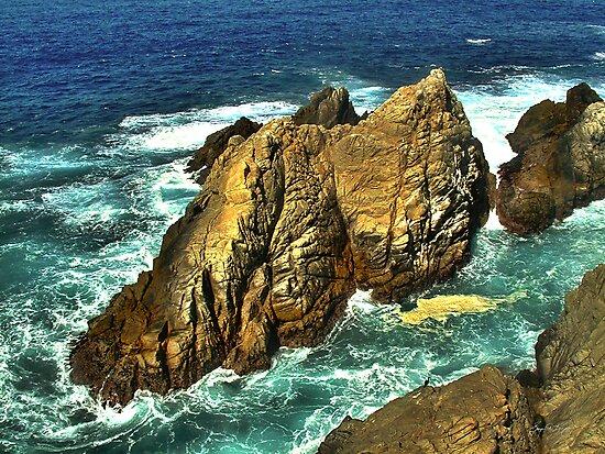 Ship Rock at Point Lobos by Wayne King