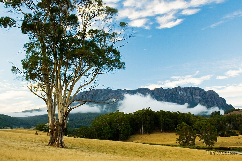 Mt Roland,Tasmania by Tim Wootton