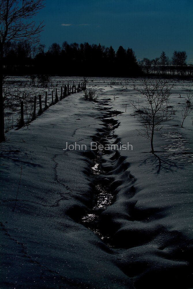 By the light of the silvery moon by John Beamish