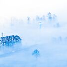 Blues by Isard