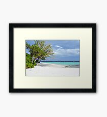 Beautiful beach in Maldives with exotic vegetation and blue water Framed Print