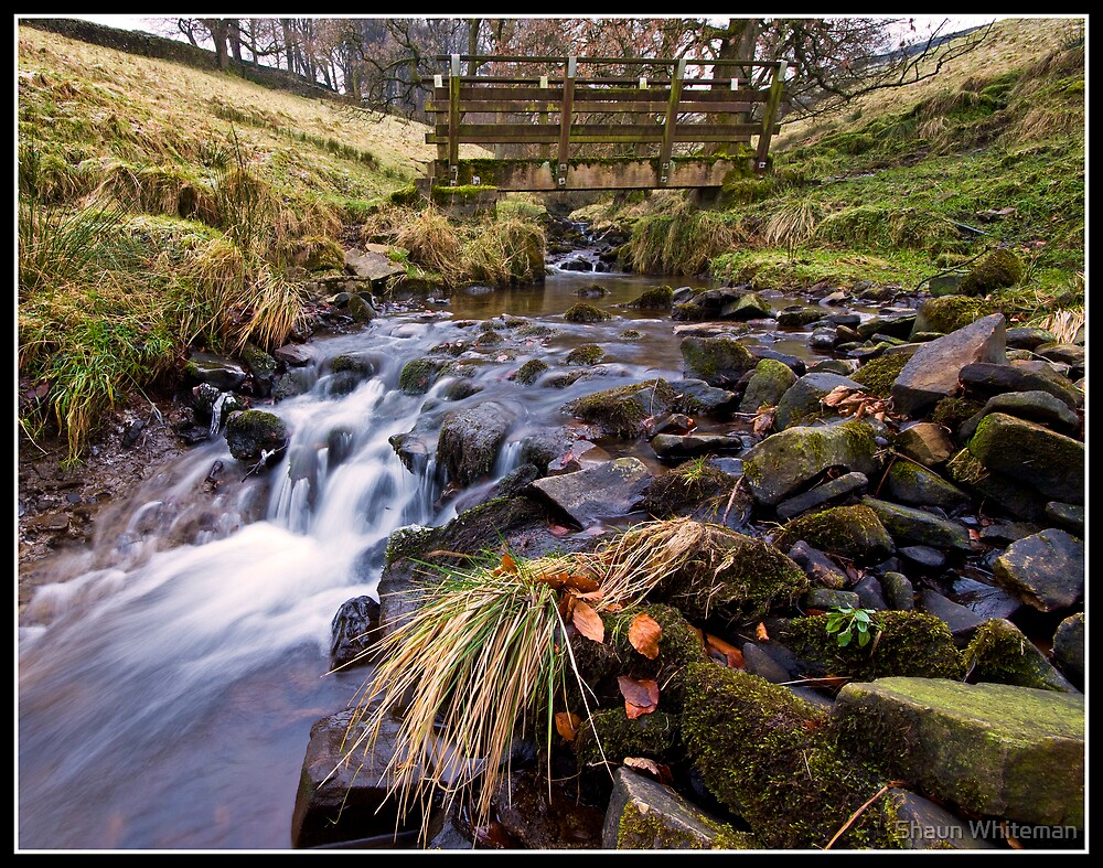 Footbridge and stream near Downham by Shaun Whiteman