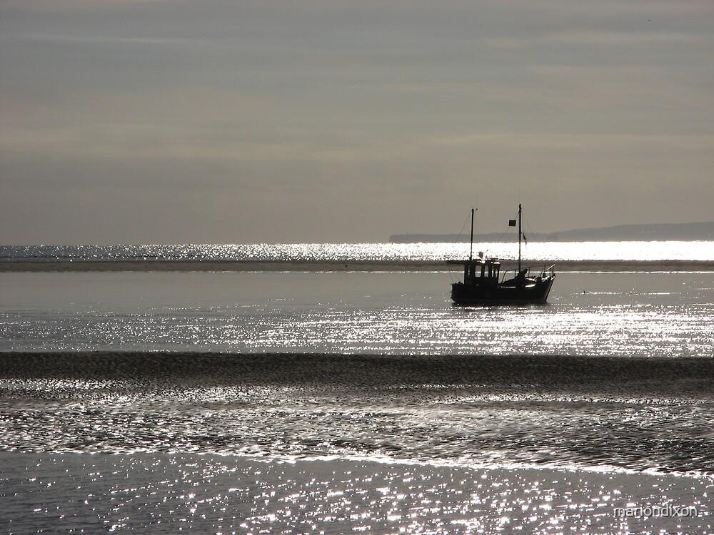 Seascape plus boat by mariondixon