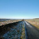 Road at Shortwaite by dougie1