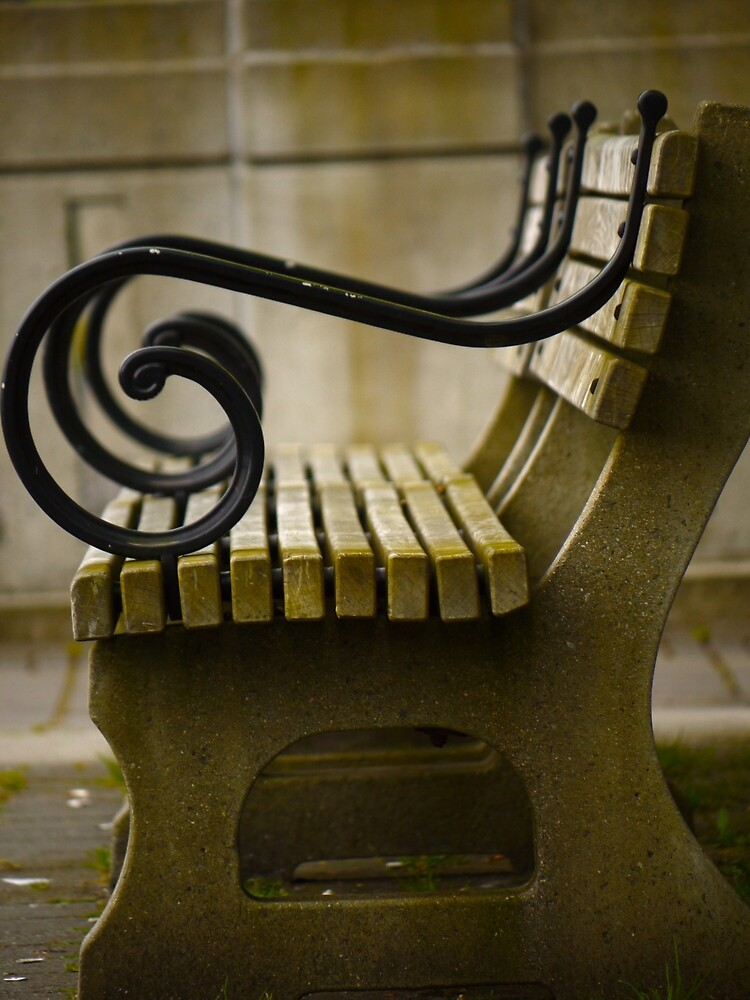 Benches by Rae Tucker