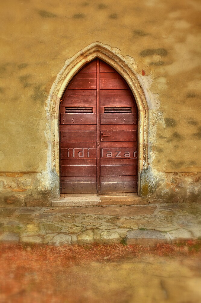 Ancient door by i l d i    l a z a r