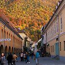 Autumn in Brasov by Rae Tucker