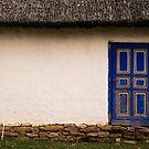 The Blue Door by Rae Tucker