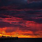 FIRE IN THE SKY by Andrew Dickman
