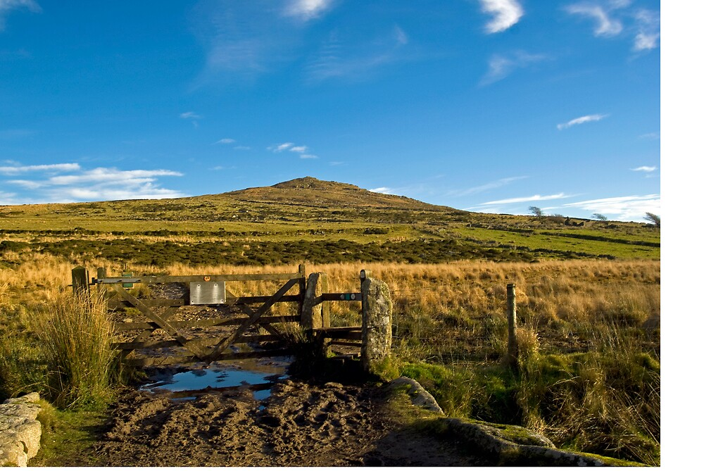Brown Willy Bodmin Moor by David Wilkins