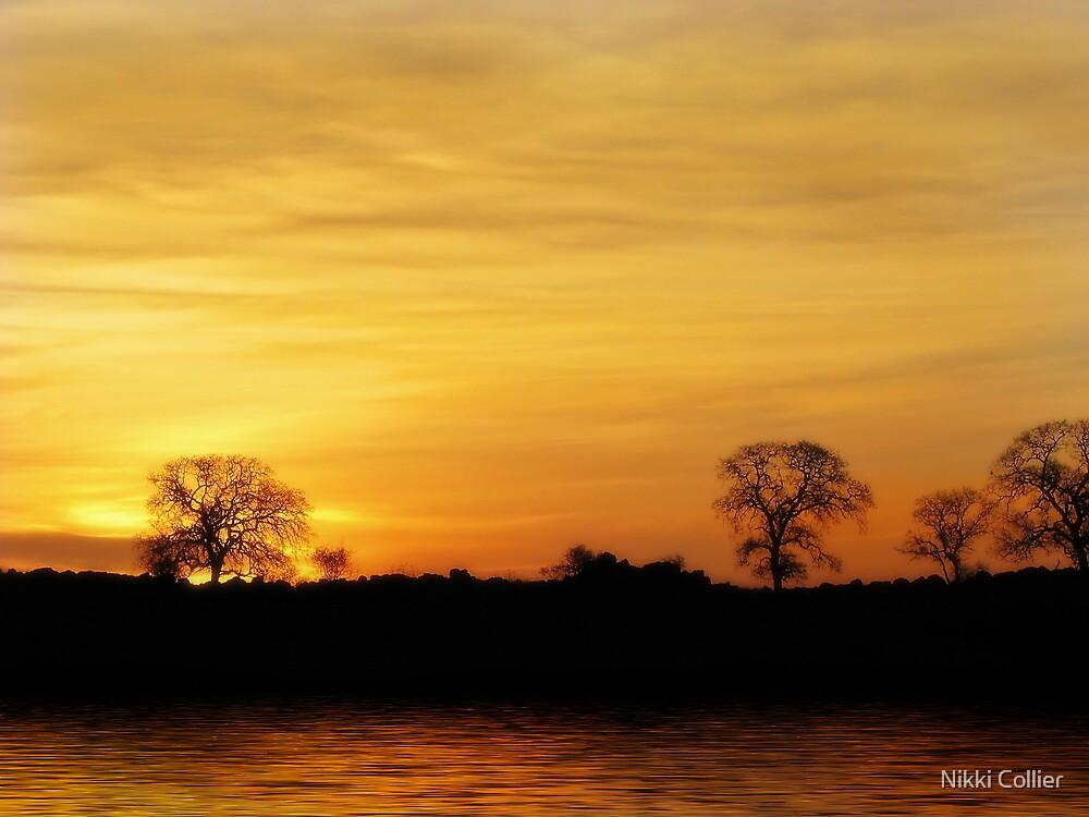 Golden Sunrise by Nikki Collier