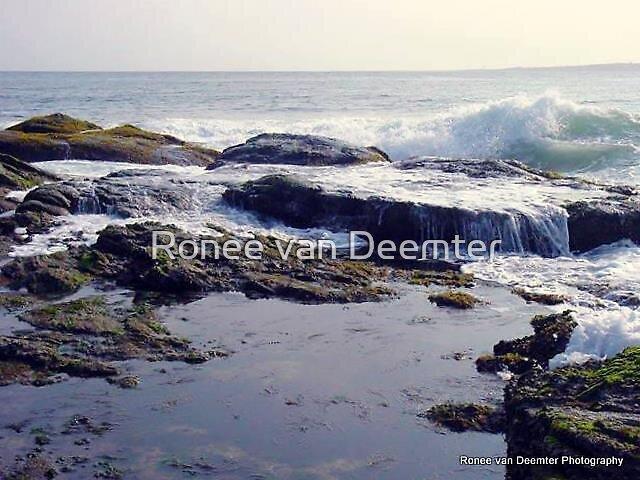 Waves in the Bay by Ronee van Deemter