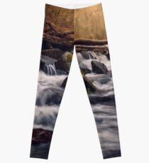 Fingle Cascades Leggings