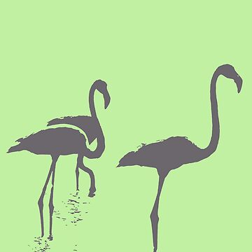 Three Flamingos Grey Silhouette Isolated by taiche