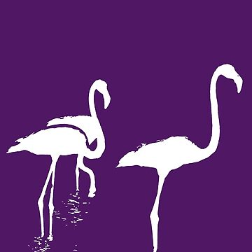 Three Flamingos White Silhouette Isolated by taiche