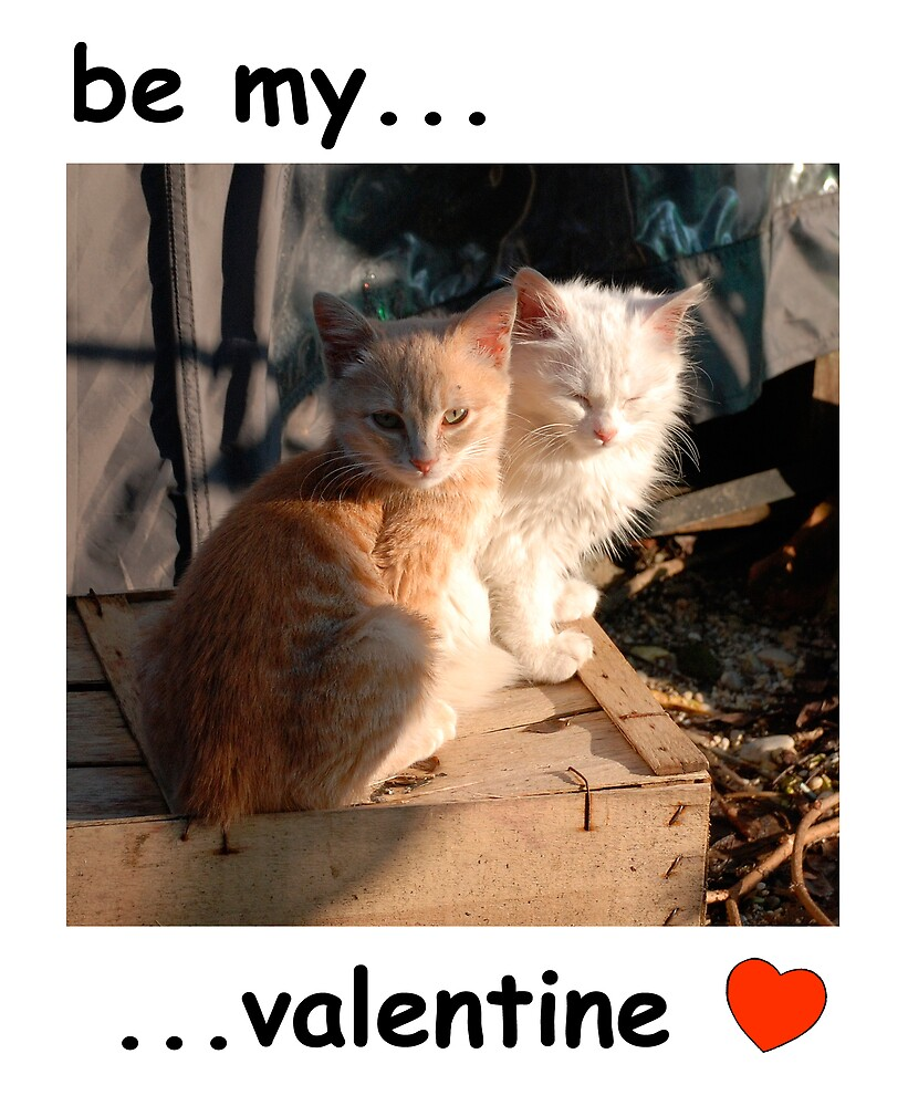 Valentines Kitties  by jojobob