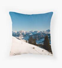 winter scenics Throw Pillow