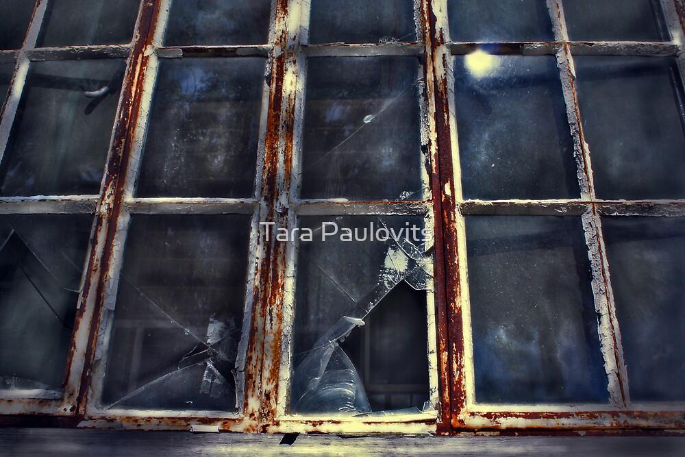 broken by Tara Paulovits