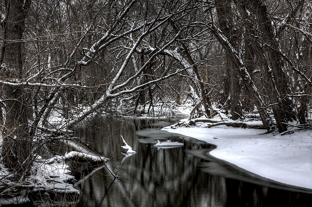 Root River by DavidHoefer