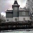 The Mansion / Das Herrenhaus by Benedikt Amrhein