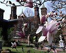 Smithsonian Castle by Jeff Clark