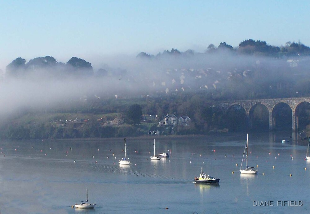 Boats In the mist by DIANE  FIFIELD