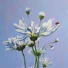 'High on Daisy' by Helen Miles