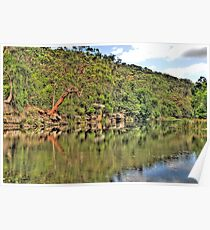 Reflection - Royal National Park - The HDR Experience Poster