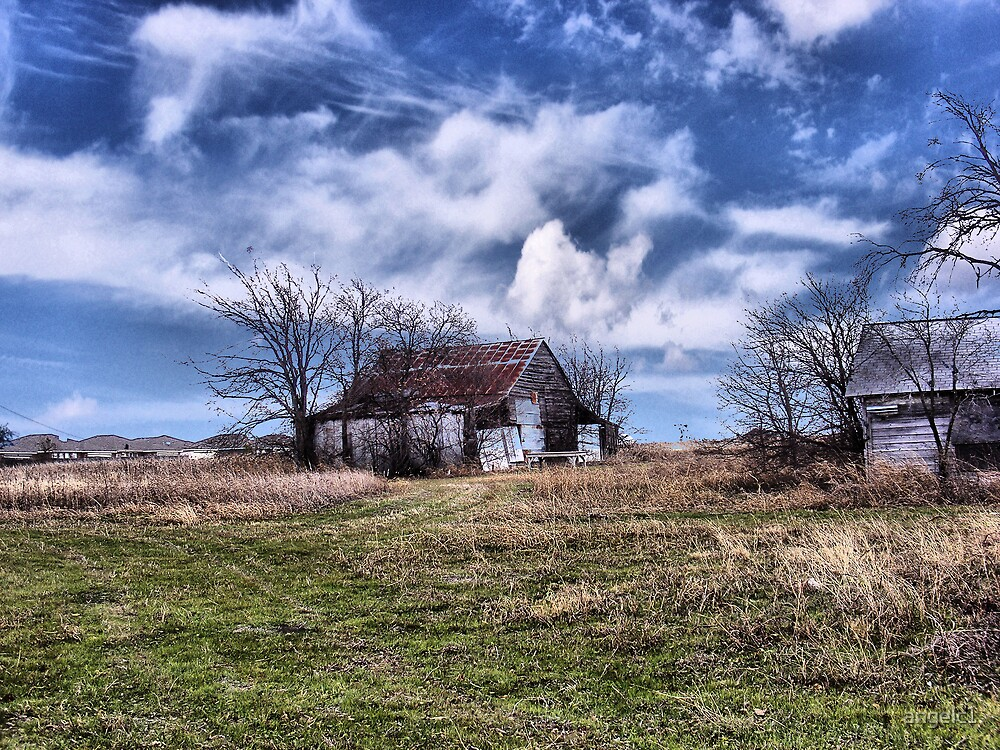 Old Barn by angelc1