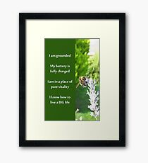 Healing Affirmations Framed Print