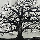 The Dark Oak by Darla Gojcz
