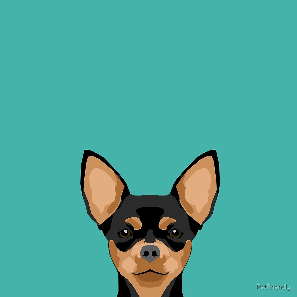 Chihuahua dog head pet portrait cute pet art chiwawas dog breed pure breeds by PetFriendly