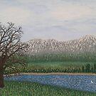 Mountain Early Spring by Darla Gojcz