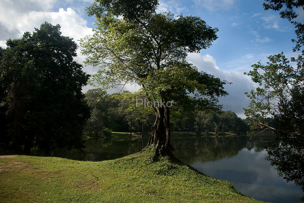 Lake Scene - Angkor Wat by Plonko