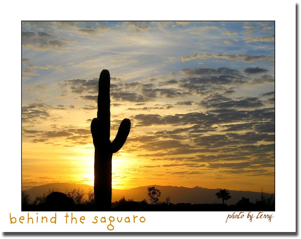 Behind the Saguaro by Terry Temple