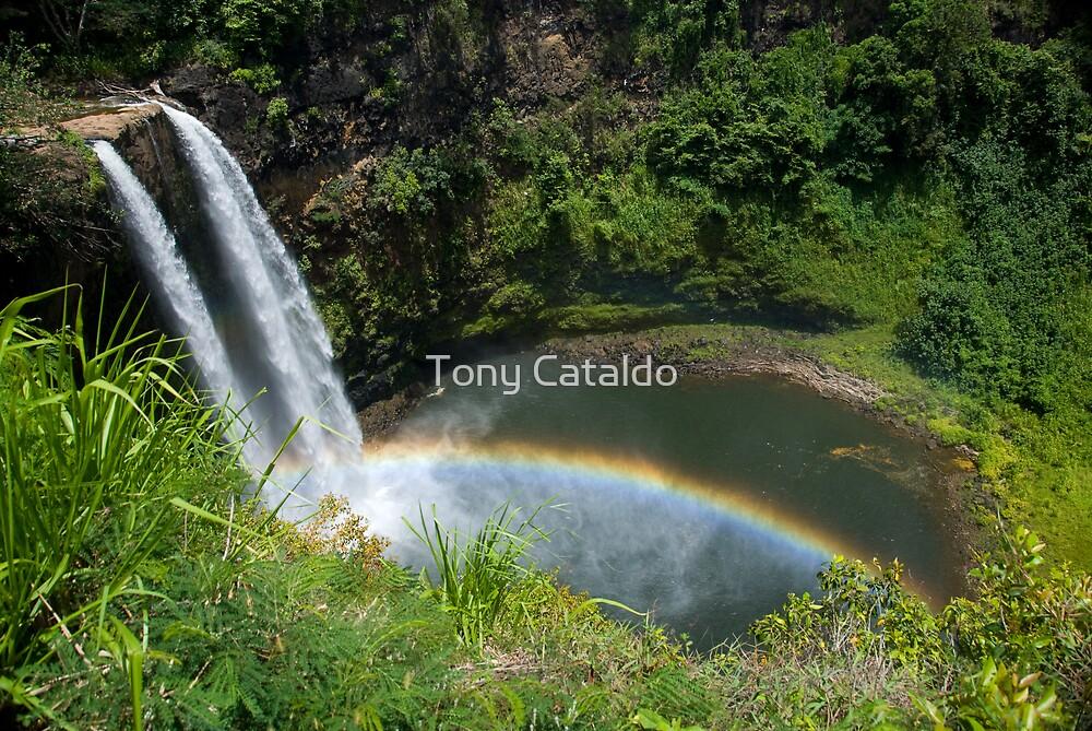 Wailua Falls with Rainbow by Tony Cataldo