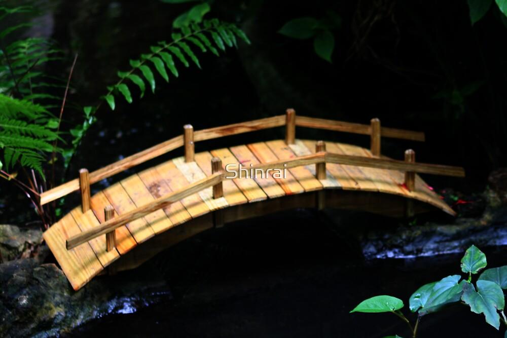 Tiny Bridge by Shinrai