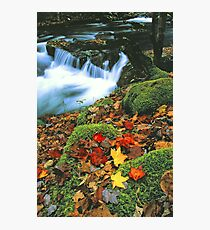 MIDDLE PRONG,AUTUMN Photographic Print