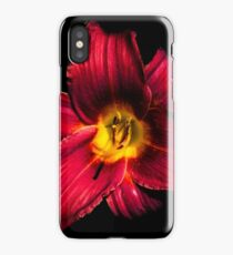 Portrait of a Day Lily iPhone Case/Skin